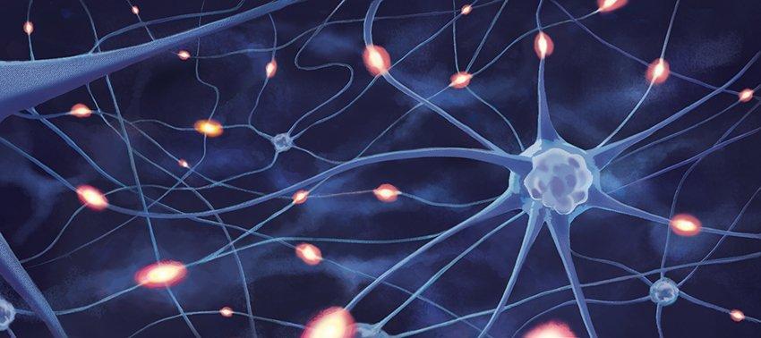 Fond-Neurone